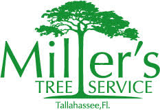 Millers Tree Service